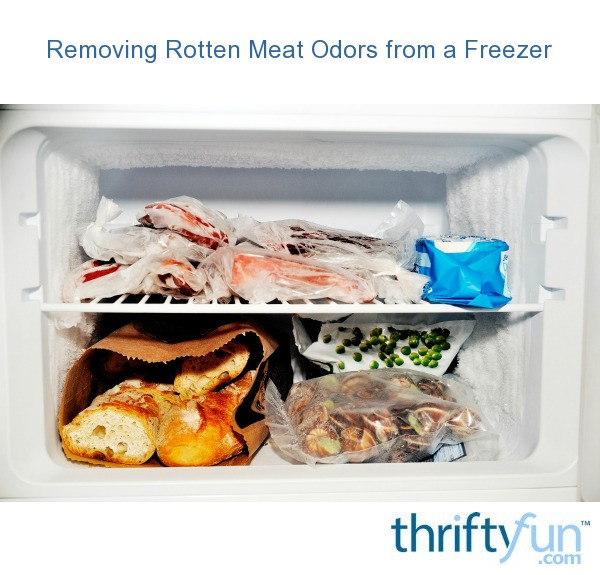 Cleaning Rotten Meat Odors From A Freezer Thriftyfun