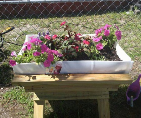 mommy daughter flower garden with pink and red flowers.