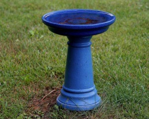 Blue painted bird bath in grass