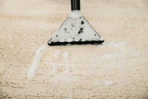 Close up of carpet shampooer removing suds from carpet