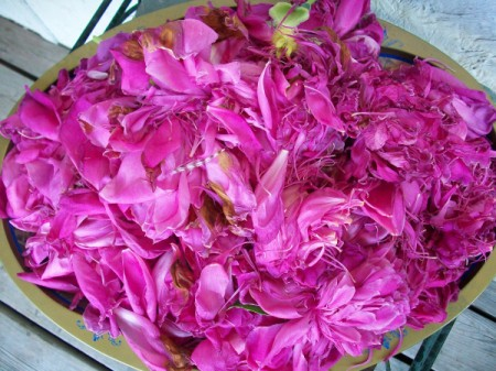 Peony Scented Water