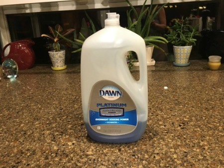 Bottle of Dawn Dish Soap