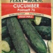 cucumber seed envelop