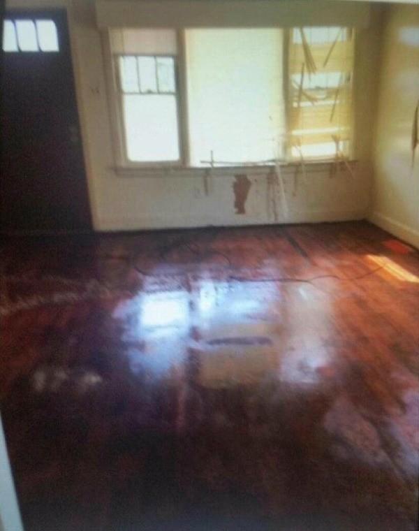 Cat Urine Odor On Hardwood Floor Thriftyfun
