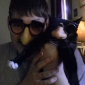 Mittens wearing glasses and false nose