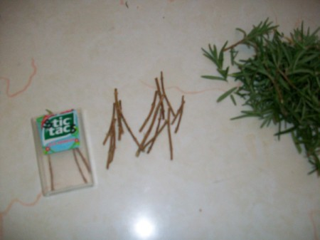 Natural Rosemary Breath Fresheners