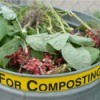 "Can full of compostables labelled ""For Composting"""