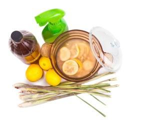 Apple cider vinegar, lemongrass, lemons for natural mosquito repellant
