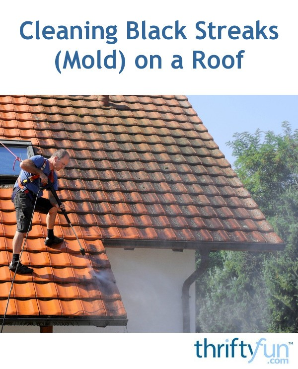 Cleaning Black Streaks Mold On A Roof Thriftyfun