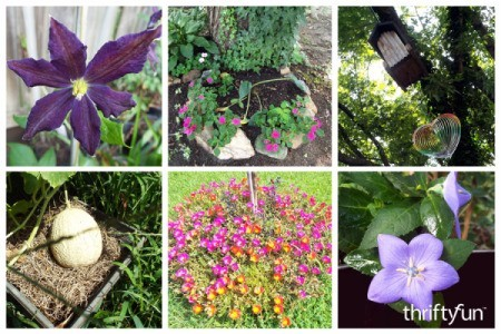 montage of garden flowers and melon