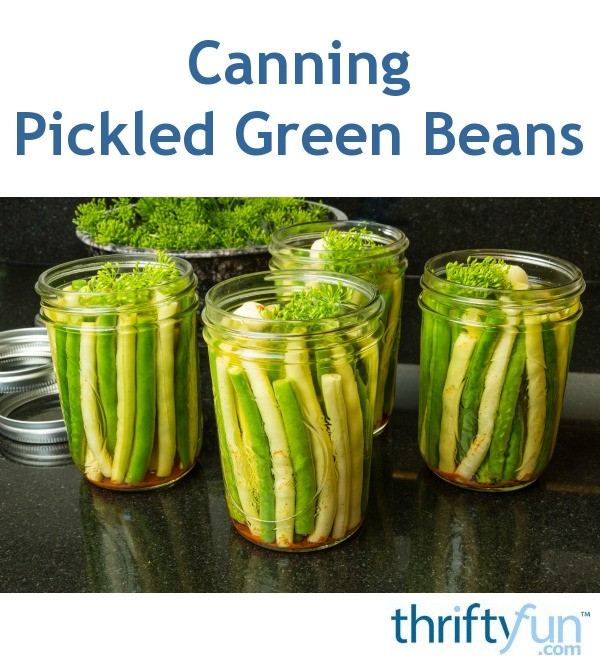 Canning Pickled Green Beans | ThriftyFun