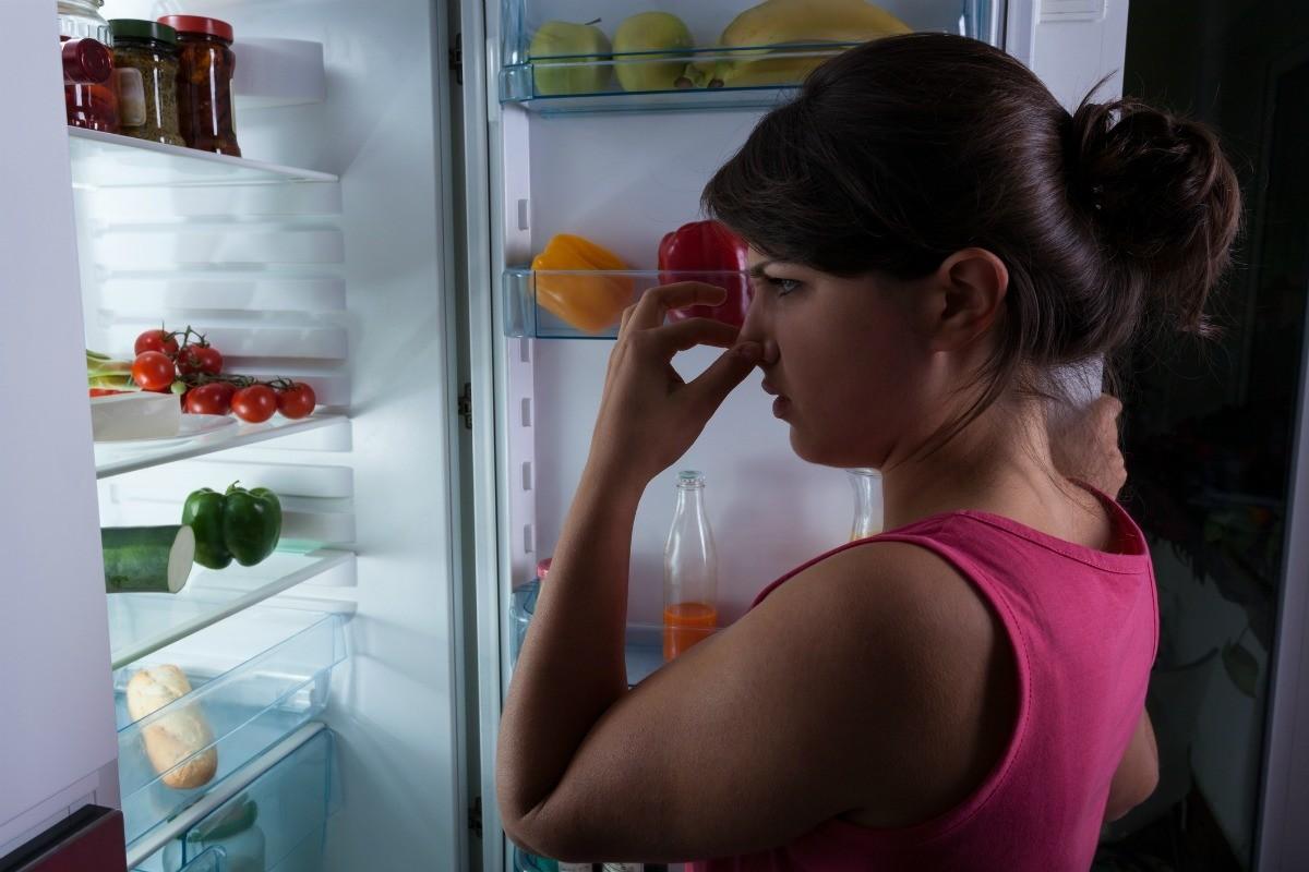 Refrigerator Fan Blowing a Bad Smell | ThriftyFun