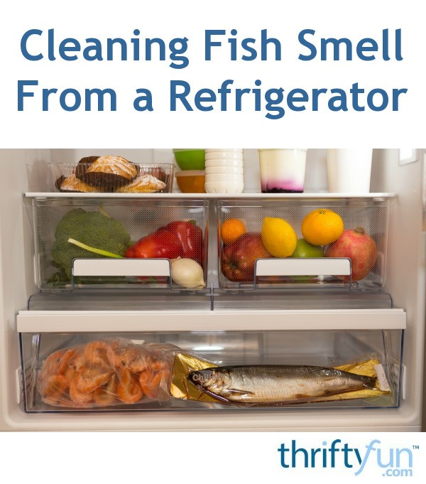 Cleaning fish smell from a refrigerator thriftyfun for How to remove fish smell