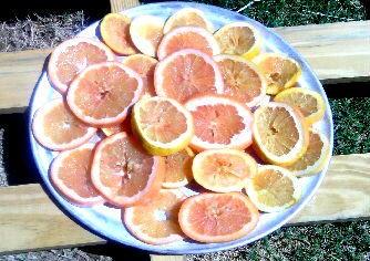 Grapefruit Potpourri