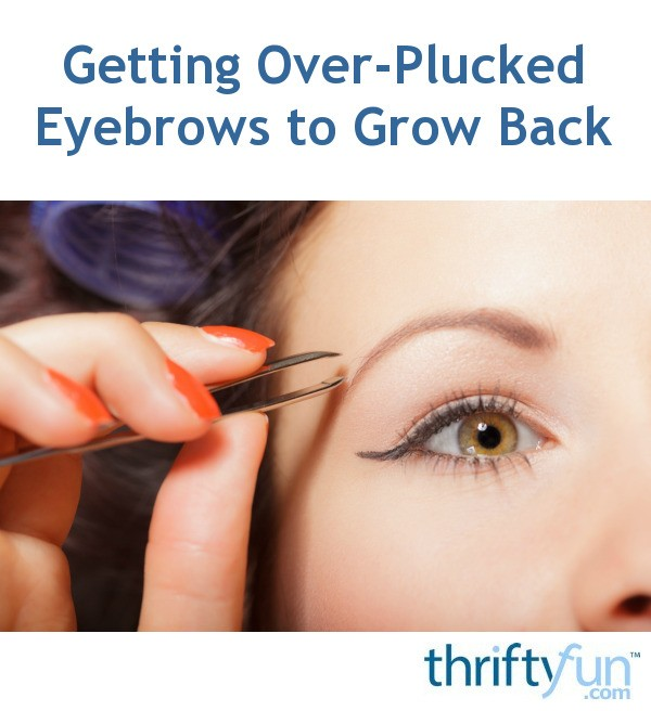 Getting Over Plucked Eyebrows To Grow Back Thriftyfun