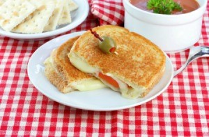 Grilled Cheese and Tomato Sandwich on red plaid tablecloth
