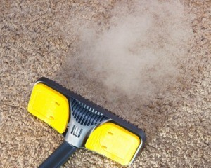 Steam cleaner being run over carpet