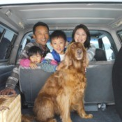 dog in back of car with family in background
