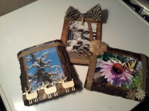 Natural wood photo display