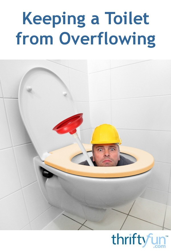 Keeping A Toilet From Overflowing Thriftyfun