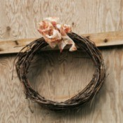 Getting Rid of Bugs in Grapevine Wreaths