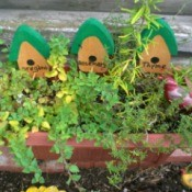 herbs in planter with cute birdhouse decorations