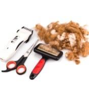 Dog brush, scissors, razor, and dog fur