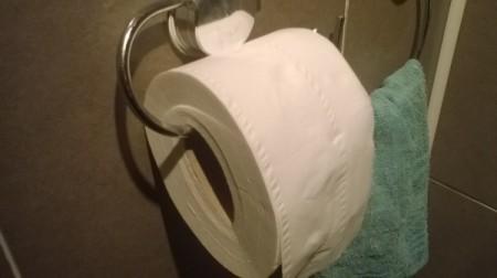 Using Less Toilet Tissue
