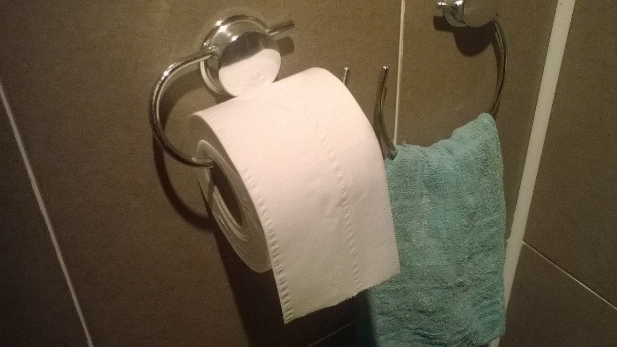 Tip Using Less Toilet Tissue
