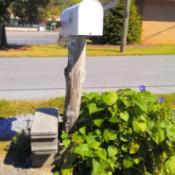Cinderblock Mailbox Support