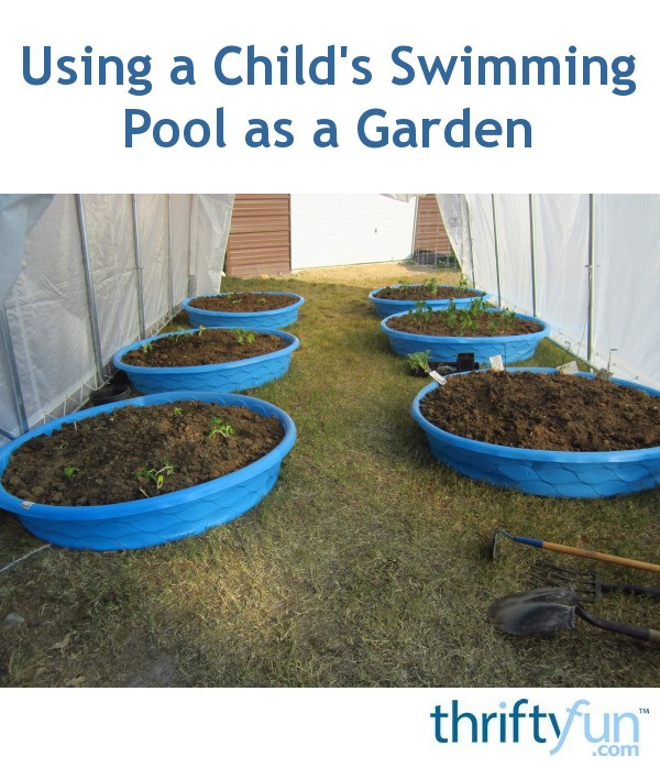 Using A Child 39 S Swimming Pool As A Garden Thriftyfun