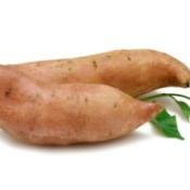 Sweet Potato growing vines