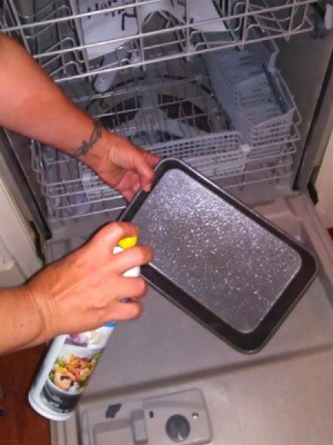 Spray Cooking Oil Over Dishwasher