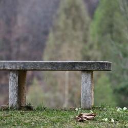 Concrete bench on grass