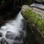 View of a small falls tumbling over a mossy rock.