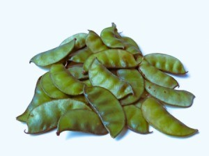 A pile of fresh hyacinth beans.