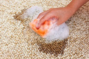 Hand scrubbing and oil stain out of a carpet.