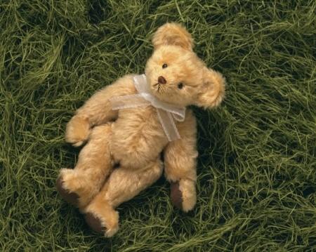 A posable teddy bear on a grassy background.