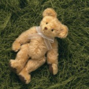 A posable teddy bear on a grassy background.