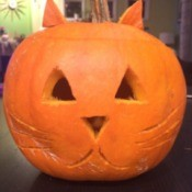 Cute kitty Jack-O-Lantern.