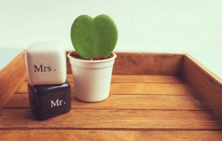 A potted heart shaped cactus used for a wedding decoration.