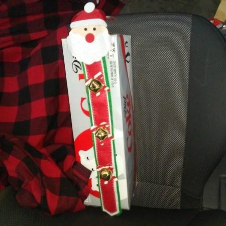 Santa door hanger on carton of Coke