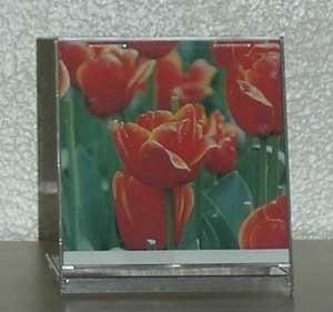 CD Jewel Case Décor
