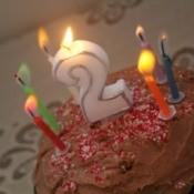 A birthday cake celebrating a second birthday.