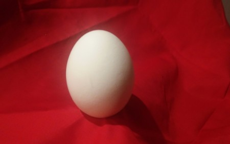 An egg on a red background