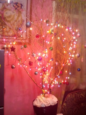 branch tree with lights against a pink wall