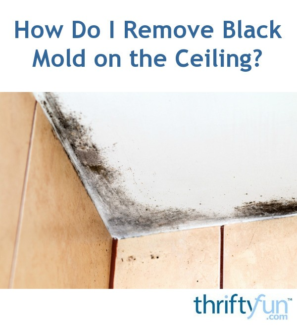How do i remove black mold on the ceiling thriftyfun - How to clean mold off bathroom ceiling ...