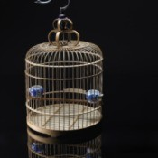 bird cage on dark background