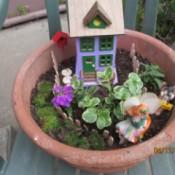 Making a Mini Fairy Garden
