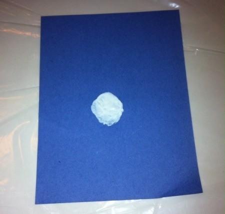 Fingerprint Penguin - one cut blue paper use white paint on thumb to make body